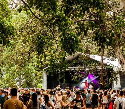 Music Photography | Field Day 2014 | The Domain, Sydney