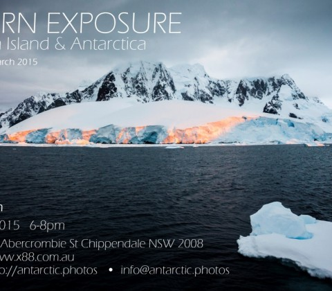 Exhibition | Southern Exposure: South Georgia Island & Antarctica